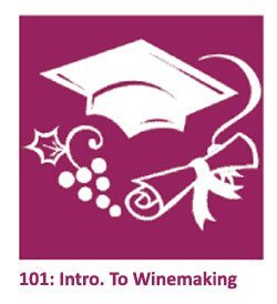 Education - Intro to Wine Making 101