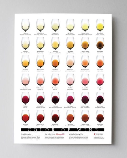 Wine Folly Poster, Color of Wine Print